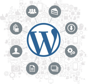 Solutions d'affaires de WordPress