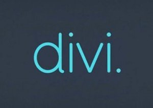 Divi Theme for WordPress