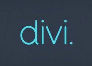Divi Theme for WordPress