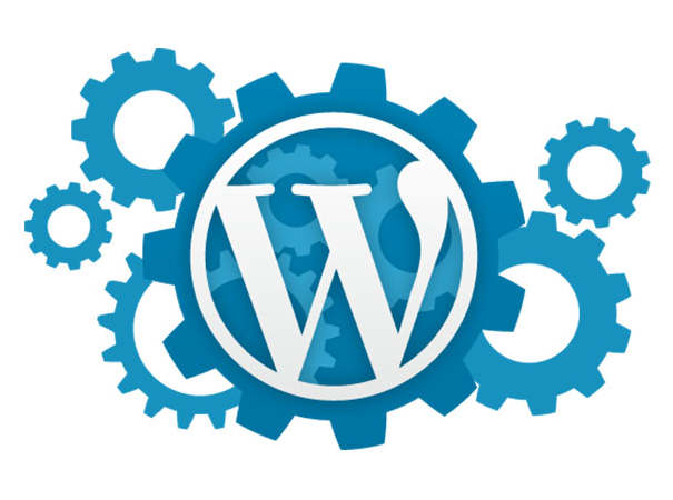 Wordpress Care Support Packages